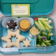 12.14.17    Turkey and cheese snowflake sandwich; two dark chocolate star cookies; Ritz crackers; cucumber sticks; steamed broccoli; and some hummus for dipping