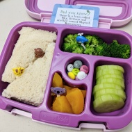01.09.18    Ham and cheese sandwich; steamed broccoli; sliced cucumber; diced peaches; M&Ms
